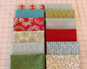 Bundle with Sparkle Panel by Amanda Murphy for Benartex Quilt Fabric with 12 Coordinating Fat Quarters