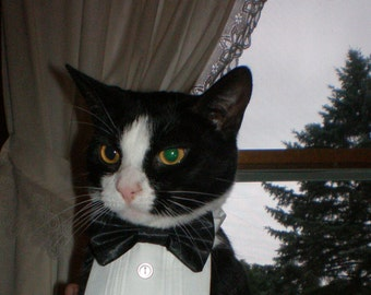 Tuxedo Shirt and Satin Bow Tie on Collar Will Fit Neck Sizes 8 - 15.5 Inch Kitten Cat Small Dog Breeds Any Small Pet