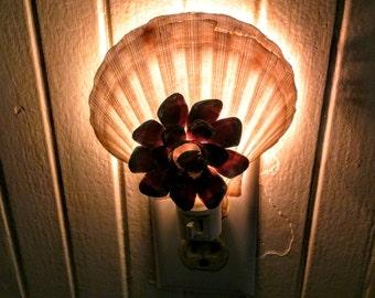 Shell Shop Night Light
