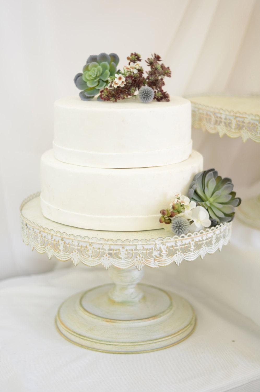 When To Prune Wedding Cake Tree: Quot wedding cake tree grows on you ...