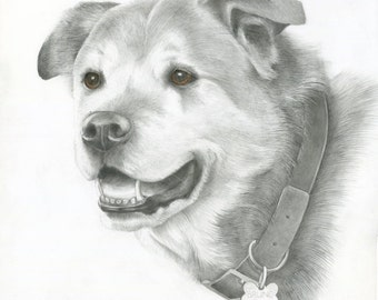 Custom Pet Portrait, Custom Dog Drawing, Original, Hand Painted Art from your photos