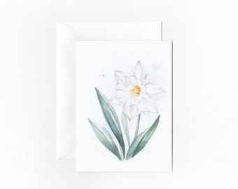 White Daffodil Spring Flower Greeting Card