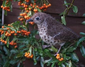 Needle Felt Song Thrush Bird Sculpture