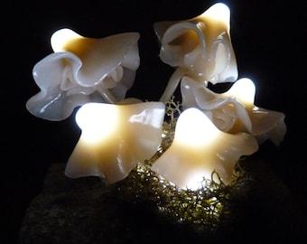 Fairy Fungi Lights
