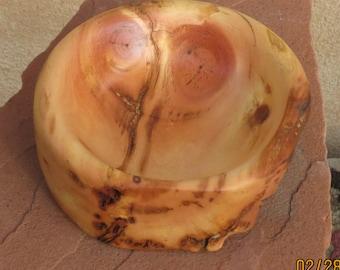 Ancient Bristlecone Pine, bowl,Live edge (FREE SHIPPING)