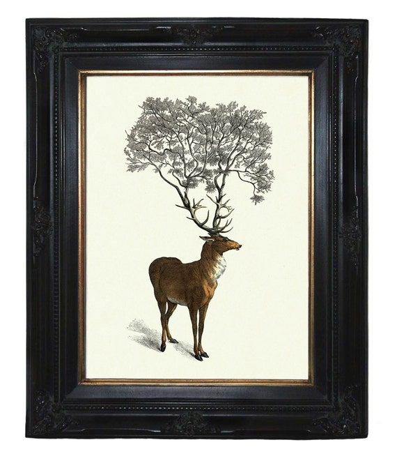 Deer Stag Tree growing from Antlers - Victorian Steampunk art print Woodland Forest Surrealism