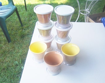 Nine vintage Raffiaware Thermo Temp dessert pedestal footed dishes bowl with lids