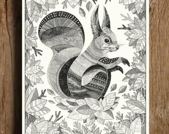 Squirrel A4/A5