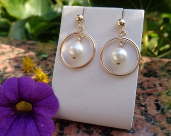 Gold Earrings with Akoya pearls in the ring, beautiful design!