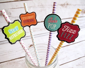 20 Assorted Drinking Themed Paper Straws, Blue, Pink, Green, Yellow Party, Wedding Straws