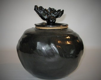 Winged Night Jar