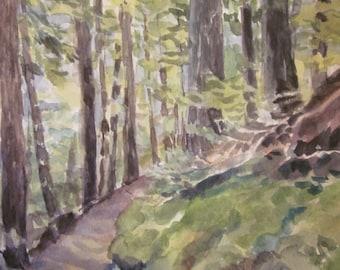 Mountain trail Canada