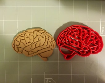 Brain Anatomy Cookie Cutter
