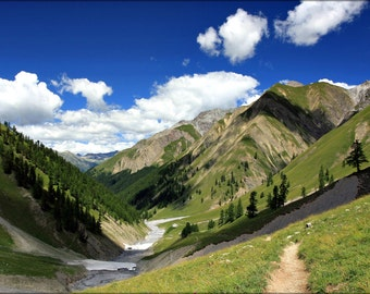 24x36 Poster . Val Trupchun Swiss National Park (GraubuNden) Switzerland
