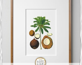 Art Posters, Vintage Palmtree, Printable wall art, Coconut,wall pictures, Digital Download, palm tree pictures, tropical decor, home decor