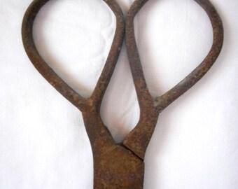 Antique Primitive Rare Wrought Iron Large Scissors, 18tn century