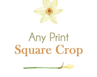 Any Print in a Square Crop - You choose!