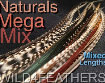 "32pc Mega Mix Naturals Pack + 4pc FREE MixedBlues Solid Feather Hair Extensions in Mixed Lengths 7""-12"",AuSLr"