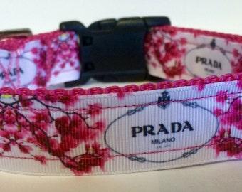 Prada inspired handmade dog collar
