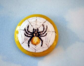 Spider Stone 1771