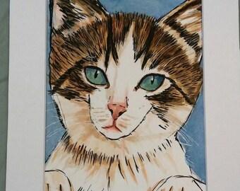 Calico Kitten Portrait Print