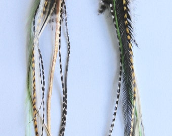 Grizzly Feather, Extension, Earring, Feather, Boho, Gipsy, Festival Jewellry,Long Feathers,Thin feathers,Hair Feathers,Turqoise, brown