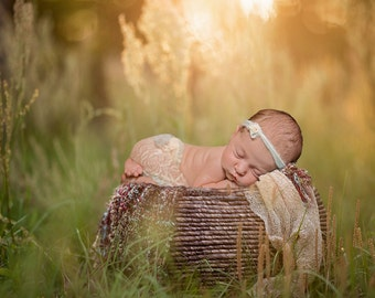 Newborn Basket in Field Digital Background