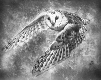 Owl (6), original drawing by evgeniyfill82, 16 x 12 inch, graphite on paper