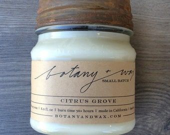 Citrus Grove 8oz Candle With Rusty Zinc Lid - 100% Soy