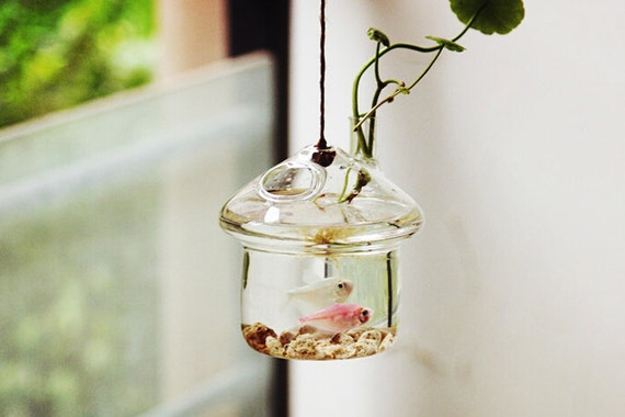 Gift Guide for Nature Lovers - International Shipping. Unique mushroom house style aquarium terrarium//hanging underwater living//mini glass fish bowl// home decoration//office desk decor. Unique living nature gift decor.