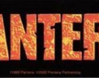 Rare Vintage Pantera Dimebag Darrell Vinyl Bumper Sticker-New!