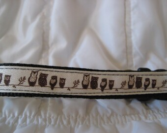 Owls dog collar for your fur baby