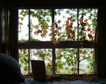 Autumn leaves, abandoned window, urban decay, japanese print, free US shipping, derelict hotel, urbex, fine art print, old window, wall art