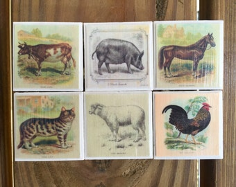 Vintage Farm Animal Magnets (set of 6)