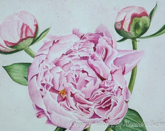 "ORIGINAL Watercolour Painting, ""Peony"", Hand Painted Flowers, Art on Watercolour Paper"