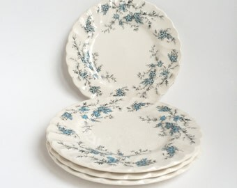 Myott England, Forget Me Not, dessert plates, set of 4