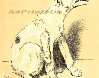Cecil Aldin A Dog Day Vintage Reproduction Photo Print  # 18 of 27