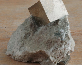 "Pyrite (""fool's gold"") cube in matrix  15-040"