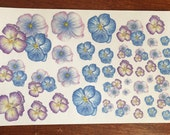 Purple & blue pansie stickers - from pencil drawings