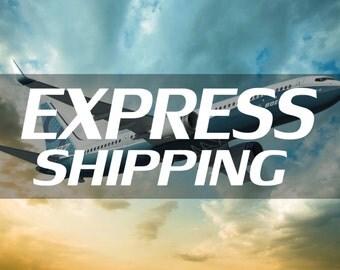 Express shipping (2-5 days worldwide)