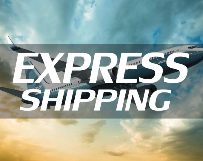 Express shipping (2-5 days worldwide)