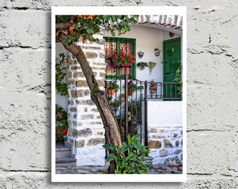 Fine Art Print, Bright White and Green Porch Full of Plants in White Hill Town of Grazalema, Spain