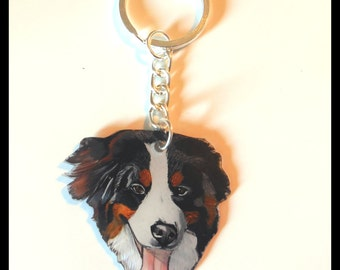Keyring personalized your pet crazy plastic.