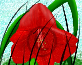 Hippeastrum  (Lovely Flowers Collection)