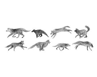 The Wolves - drawing - high quality digital print -