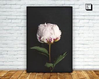 White flower print, peony print, white peony art, flower poster, flower photo, romantic gift for women, mother's day gifts, boho decor, art