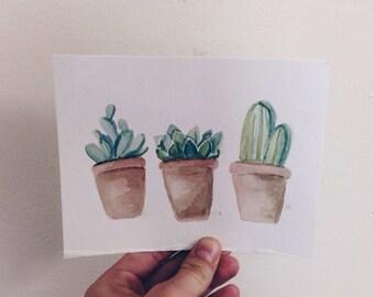 succulent trio print