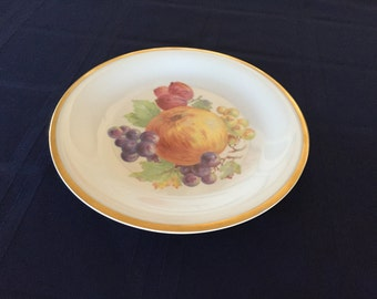 Schrvarzenhammer Bavaria Germany 7 3/4 inch Plate with Fruit Motif