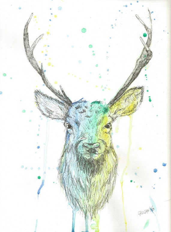 Watercolour and pen drawing of a stag. Original, gift for nature lover