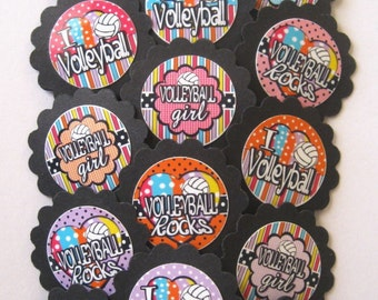 Volleyball Cupcake Toppers/party picks  (15pc set) Item #1298